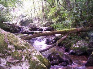 Photo of Falls Near
